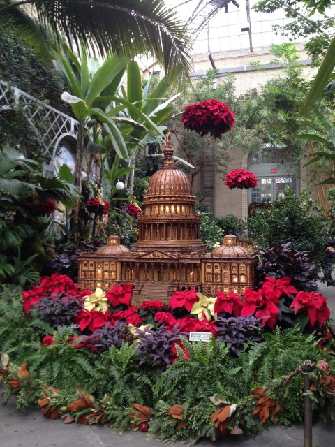 A beginner 39 s guide to christmas time in dc flip flop caravan for Botanical gardens dc christmas